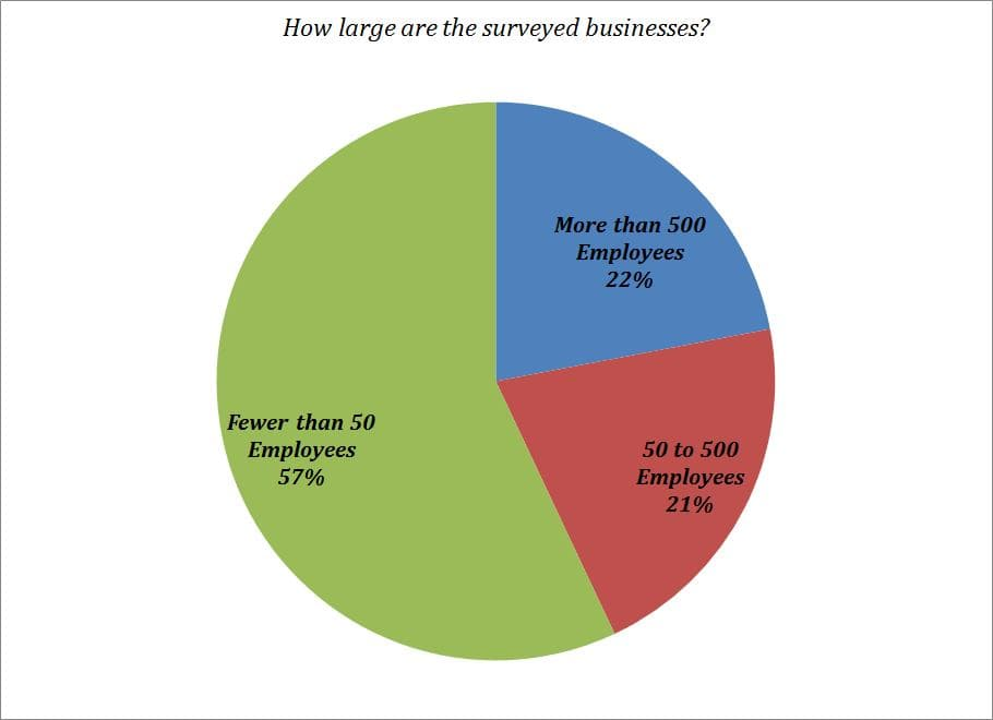 Type of businesses surveyed.